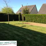 Avant: tonte de pelouse